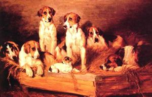 Foxhounds and terriers in a kennel, John Emms (1843-1912)