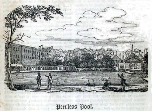 peerless-pool