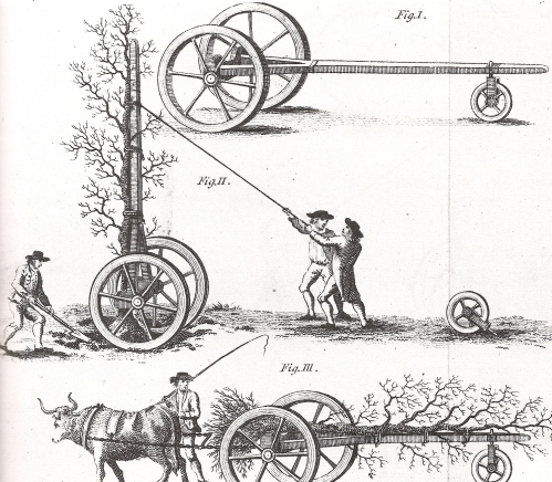 Transplanting trees, 1794, Hayes