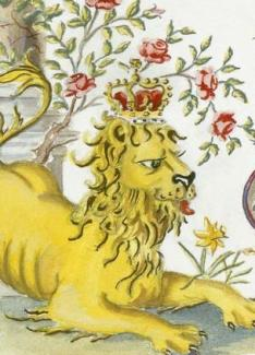 Lion detail, Prince Charles's Invitation
