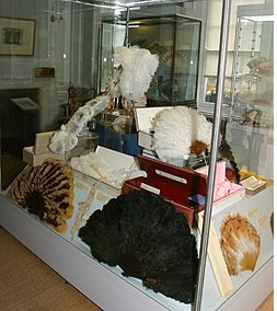 Display case, Fan Museum