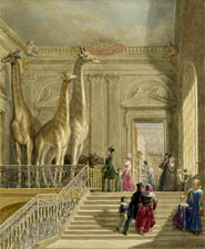 Visitors at Montagu House, British Museum, George Scharf
