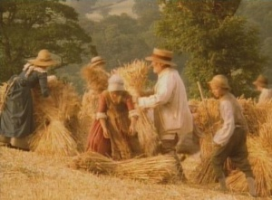 harvest 2 (2)