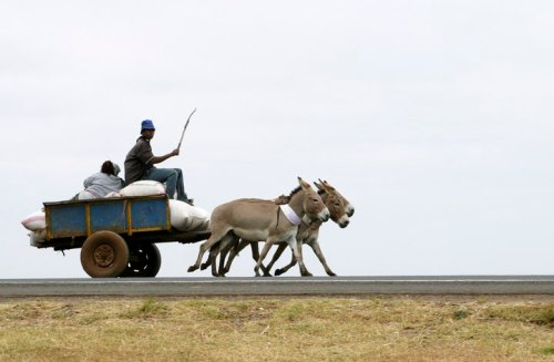 description of mode of transport in olden and present days History of transport and travel including the sledge, the wagon,  horse and chariot.