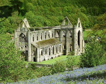 tintern abbey critical analysis