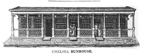 Chelsea Bun-House, image @ Gentleman's Magazine and Historical Chronicle, Volume 11