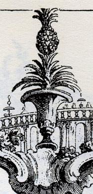 pot and pineapple detail negri