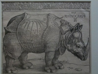 Durer's image of a rhino