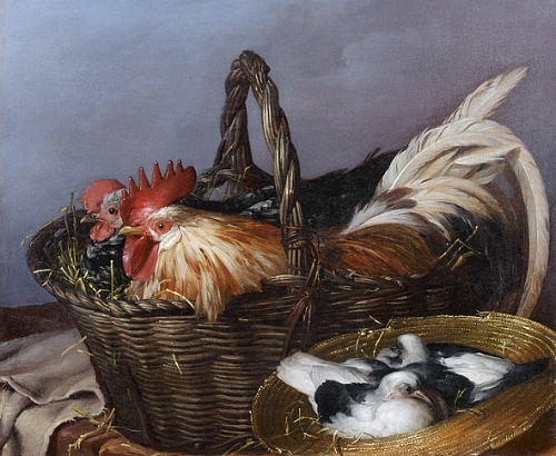 chickens and pigeons 18th c.