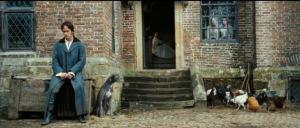 darcy courtyard
