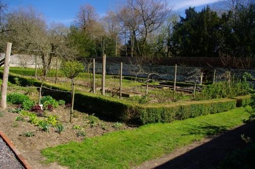 kitchen garden at Chawton House, Tony Grant