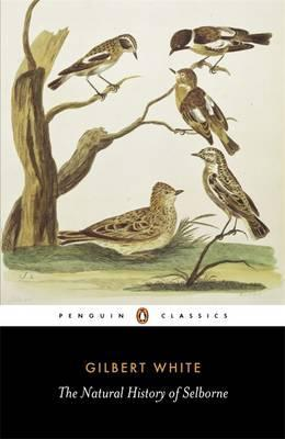 The Natural History of Selborne by Gilbert White. Cover of the Penguin Classics edition