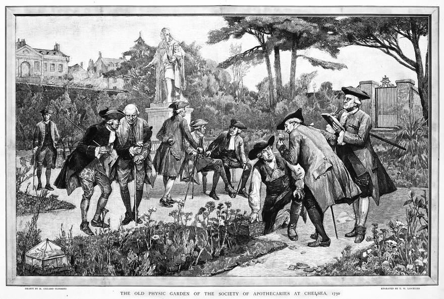 The Physic Garden, Chelsea: men botanizing in the garden, near the statue of Sir Hans Sloane, 1750. Wood engraving by T. W. Lascelles after H. G. Glindoni, 1890.. Credit: Wellcome Collection. Attribution 4.0 International (CC BY 4.0)