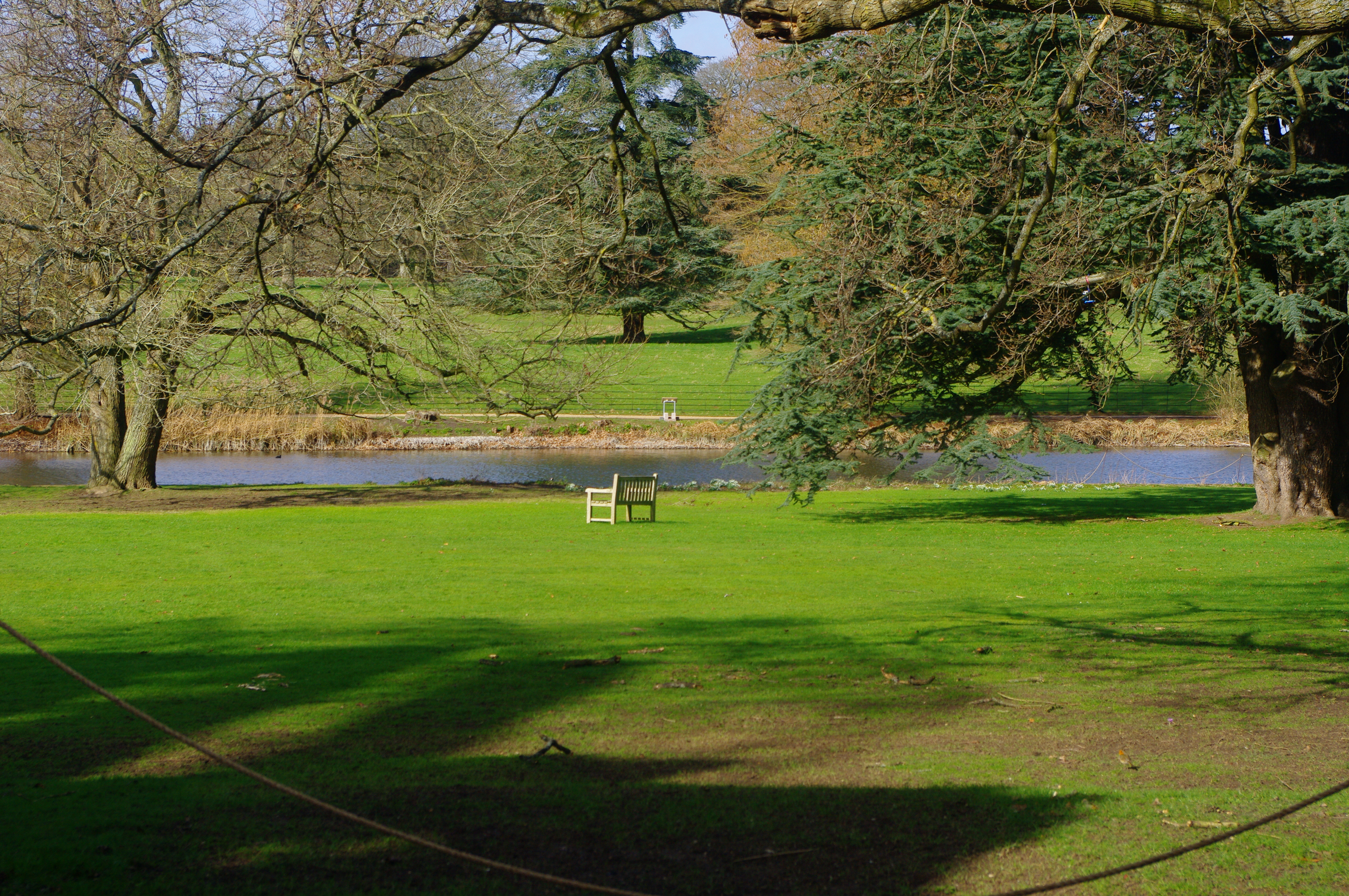 Photo of The lawns and lake at the front of The Vyne