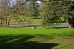 (photo L)The lawns and lake at the front of The Vyne