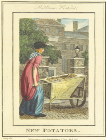 Image of woman, dressed in red and blue, pushing a wheelbarrow with new potatoes past Middlesex Hospital
